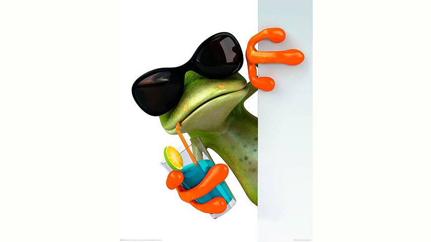 Home affaire, Deco Panel »Frosch trinkt« 40/50 cm